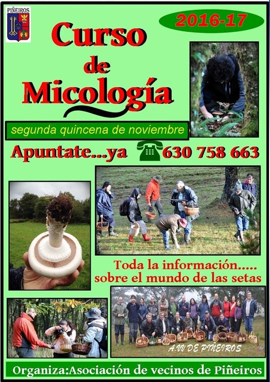 micologia-nov-2016