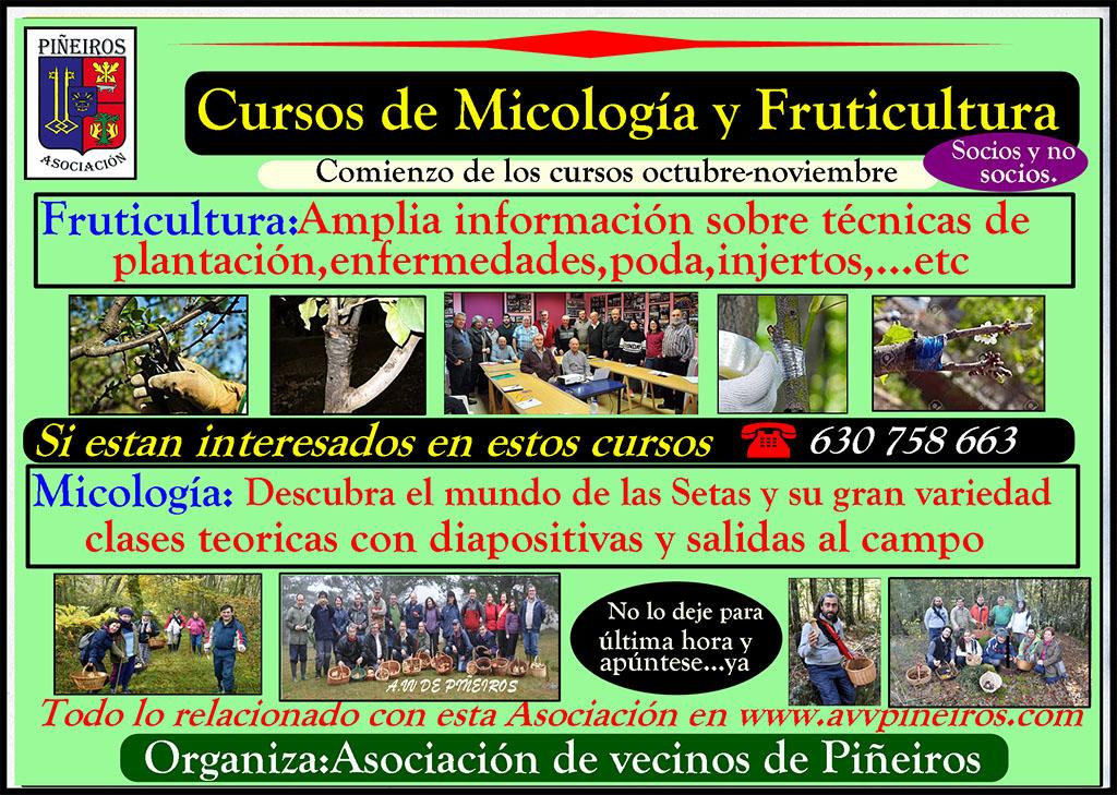 cursos-micro-fruti