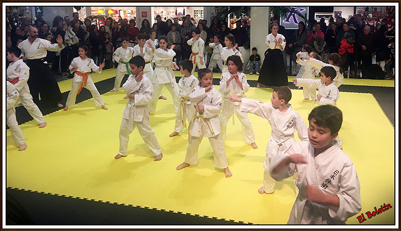 artes-marciales-200111-2