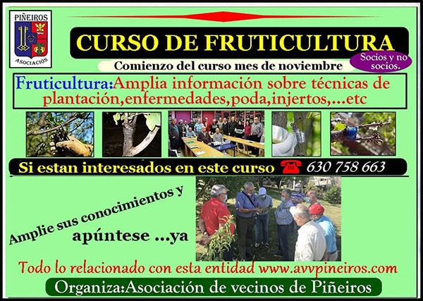 Fruticultura-nov-2020